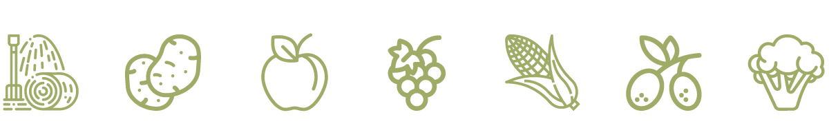 Agriturismo De Bas Riva del Garda icone